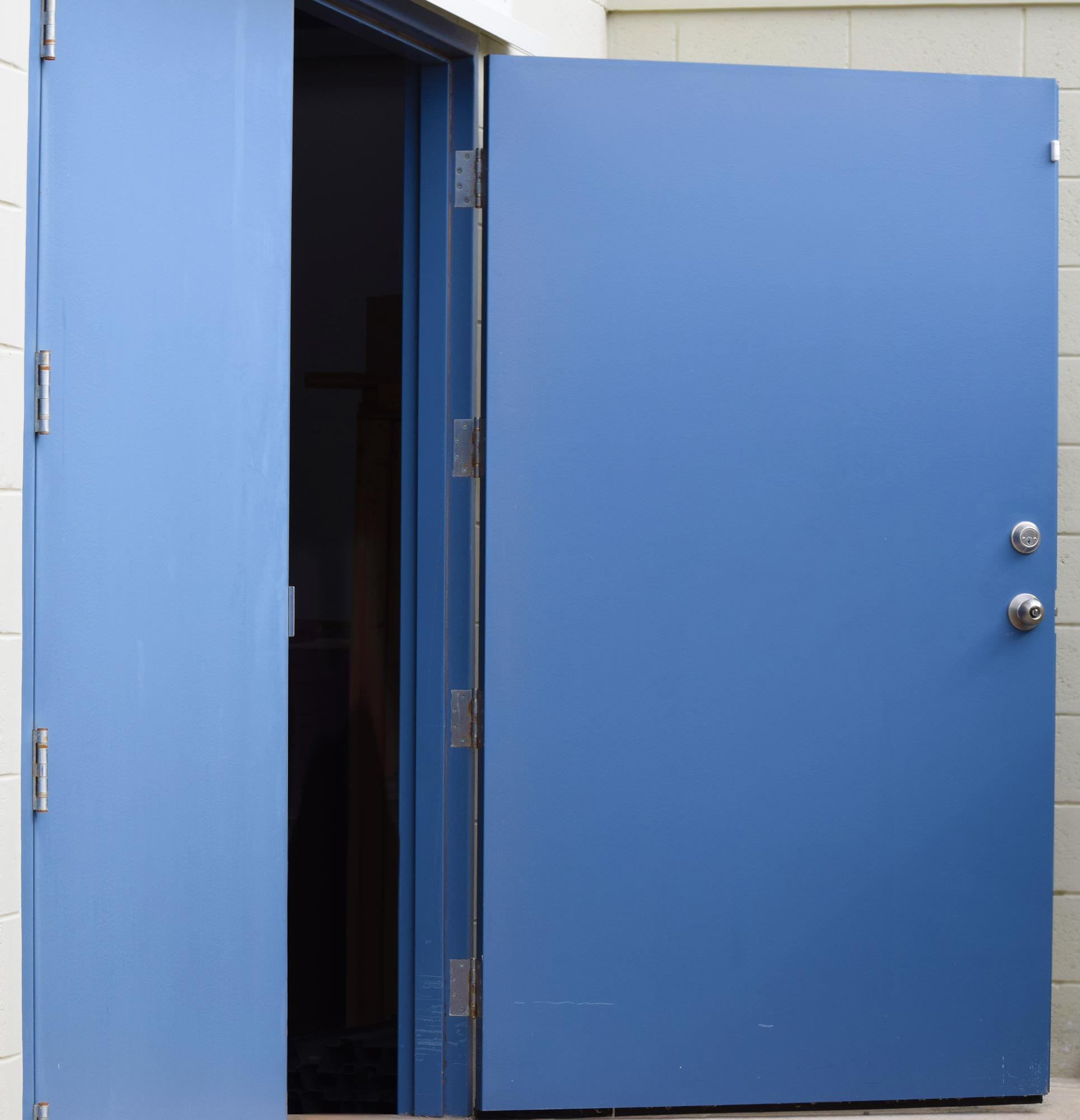 2000 #245AA7 Custom Made Steel Doors Supplied By LAMCO LAMCO Industries Ltd. In  save image Custom Made Steel Doors 46671930